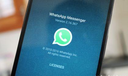 WhatsApp Enterprise app references found in the latest WhatsApp beta update