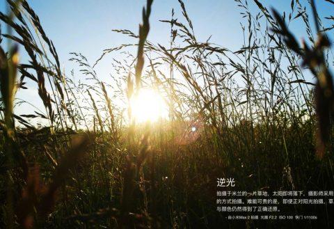 Xiaomi Mi Max 2 camera samples available