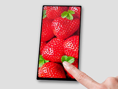 JDI's Full Active bezel-less LCD display goes into mass production