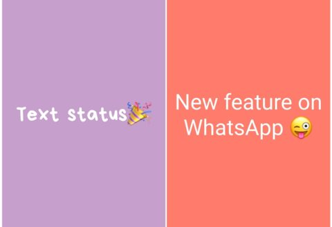 whatsapp-text-status-color-background-android-how-to-use-480x329