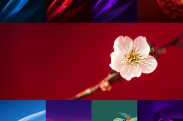 Oppo R15 Stock Wallpapers